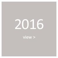 2016-year.jpg