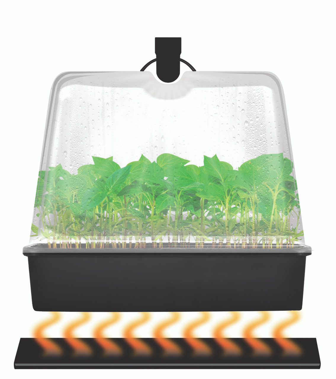 Super Sprouter® Premium Heated Propagation Kit with 7 in Dome & T5 Light