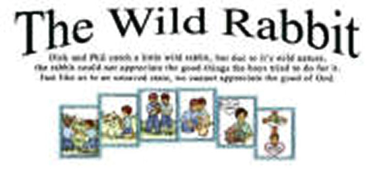 The Wild Rabbit (object story)