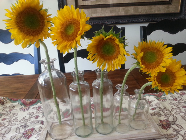 Bottle Vases on a Wood Tray