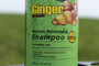 Ginger Shampoo and Conditioner Essence Hair Loss and Anti Dandruff Treatment Bonus Pack 2 x 16 fl. oz.