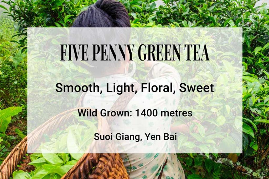 Five Penny Green Tea, Suoi Giang, Vietnam. Wild tea, ancient trees, shan tuyet