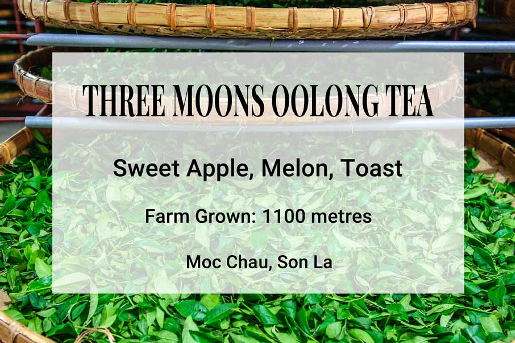 Three Moons Oolong Tea