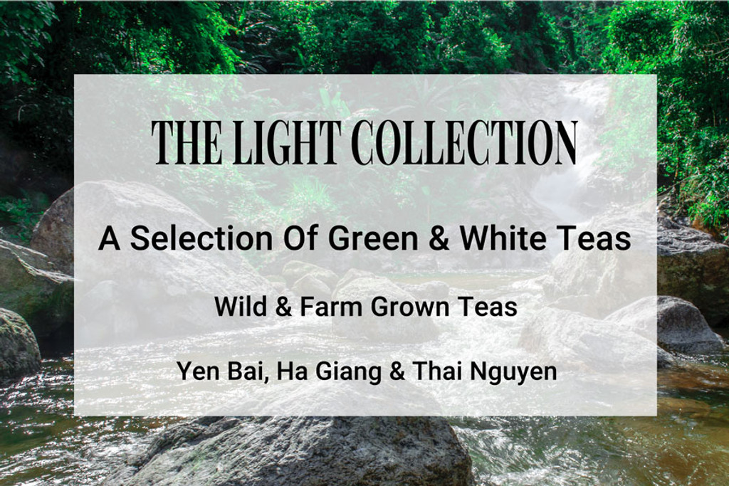 The Light Tea Collection