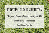Floating Cloud White Tea Suoi Giang, Yen Bai, Vietnam. Wild tea, wild tea trees, shan tuyet, ancient tea trees