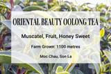 Oriental Beauty Oolong Tea Vietnam