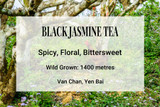 Black Jasmine Vietnam Tea