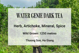 Water Genie Dark Tea Ha Giang Vietnam Shan Tuyet