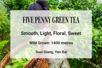 Five Penny Green Tea, Suoi Giang, Vietnam. Wild tea, ancient trees, shan tuyet