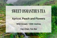 Sweet Osmanthus Tea