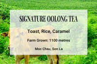 Signature Number 1 Oolong Tea Vietnam