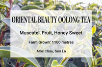 Oriental Beauty Oolong Tea Vietnam