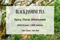 Black Jasmine Vietnam Tea