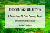 The Oolong Tea Collection