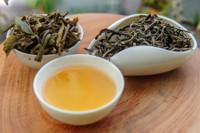 Forest Genie Dark Tea Display Y Ty Vietnam