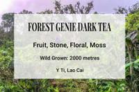 Forest Genie Dark Tea Y Ty Vietnam Shan Tuyet