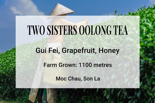 Two Sisters Oolong Tea Vietnam