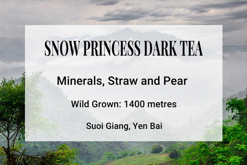 Snow Princess Dark Tea Vietnam