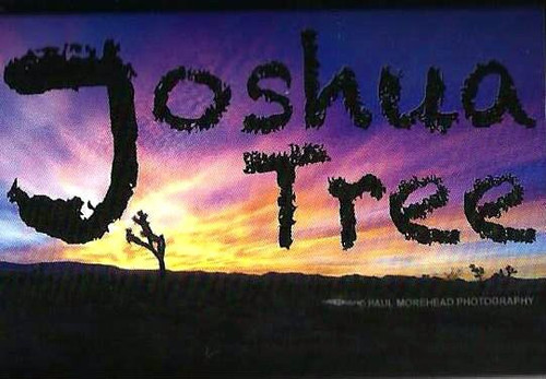 Joshua Tree scenery sticker from local photographer Paul Morehead