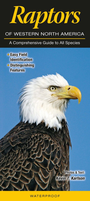 A waterproof comprehensive guide to all species. Easy field identification, and distinguishing features.