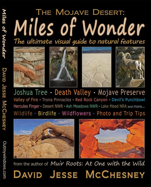 Miles of Wonder book written by David Jesse McChesney