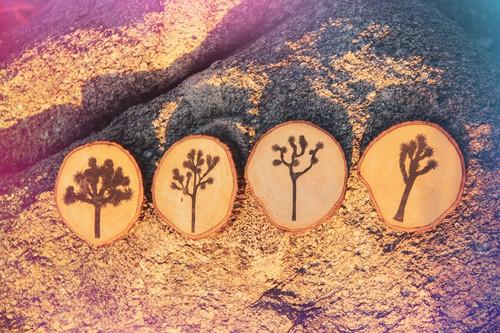 Joshua Tree Coaster Set