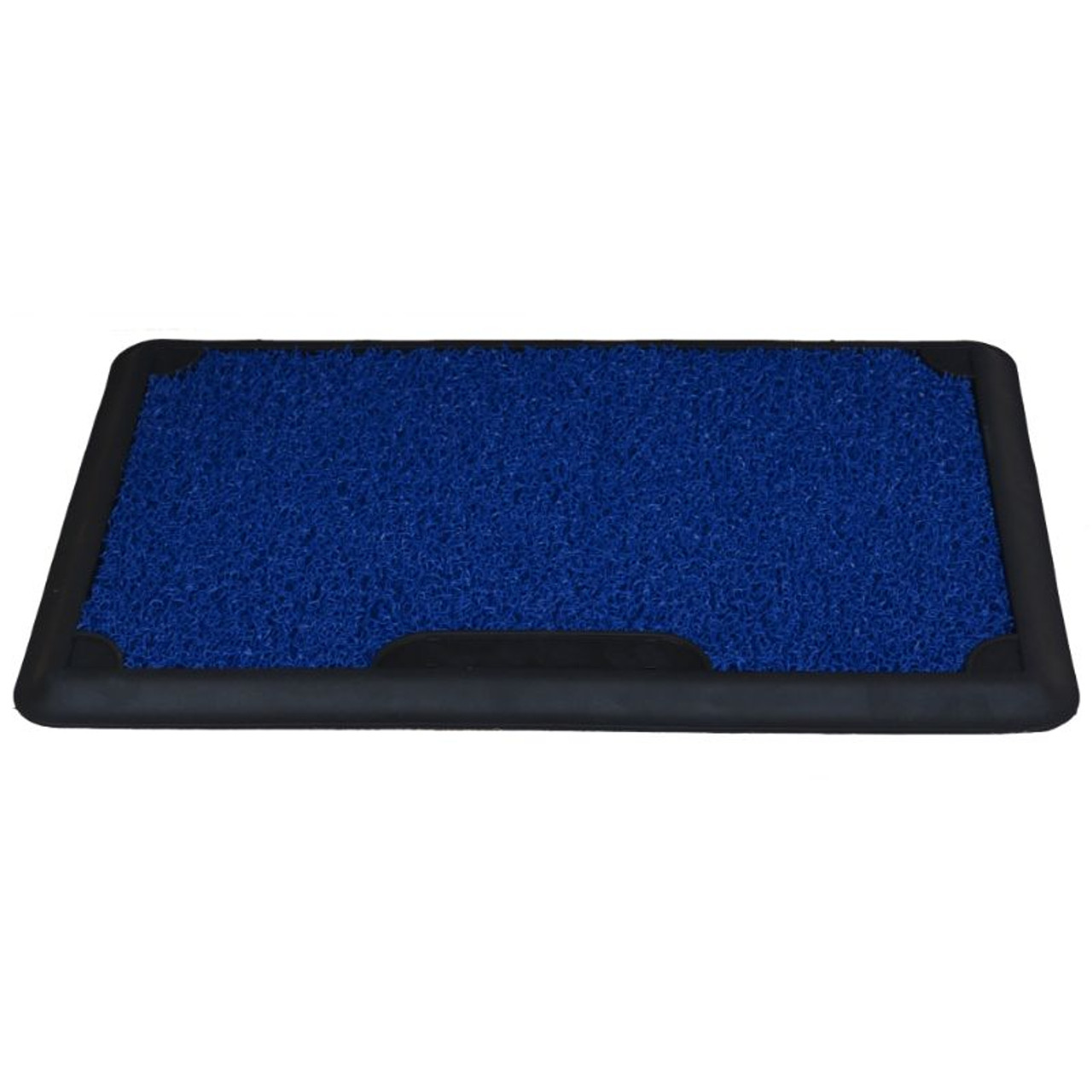 """Shoe Disinfecting Mat with Removable Carpet for Sanitizing Footwear - 17""""x27"""""""
