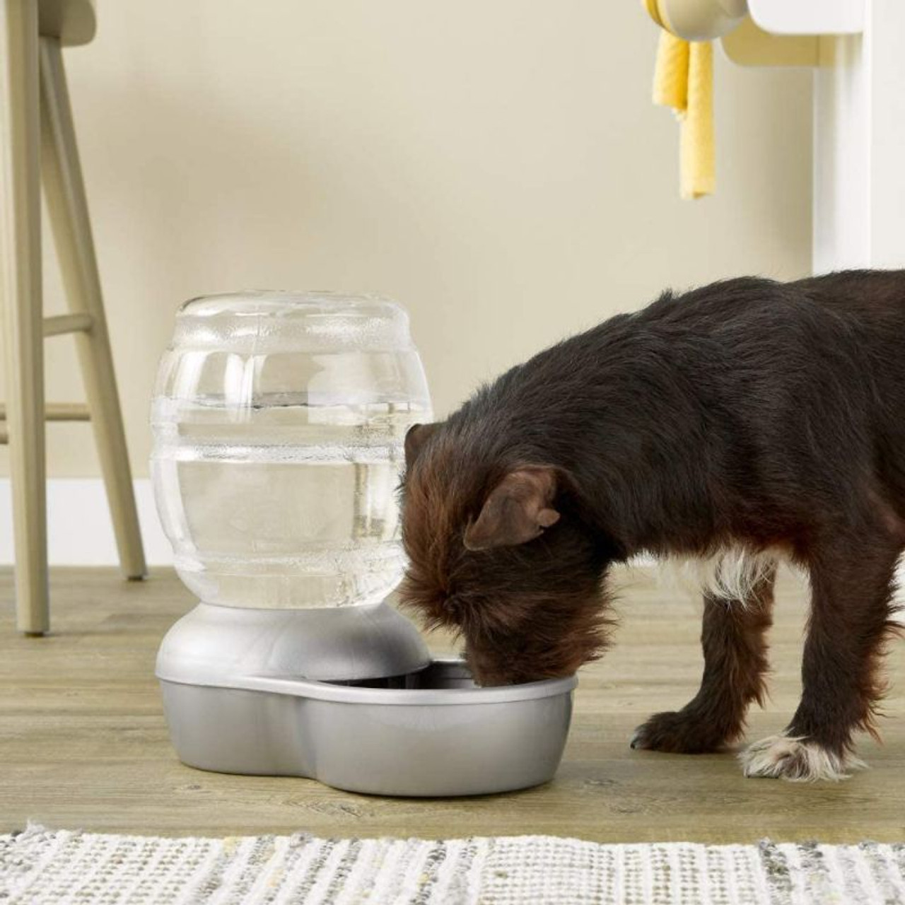 Petmate Replendish Gravity Waterer With Microban for Cats and Dogs - 2.5 Gallons