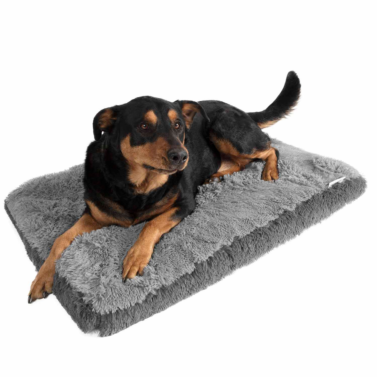 Paws & Pals Fuzzy Pet Bed