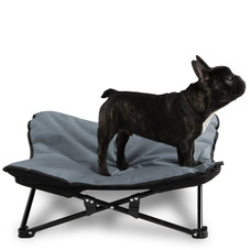 Elevated Camping Pet Bed For Dogs Up To 90lbs