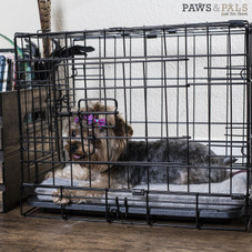 """Oxgord Double Door Folding Dog and Cat Crate, Kennel with Tray, 20""""- 48"""""""