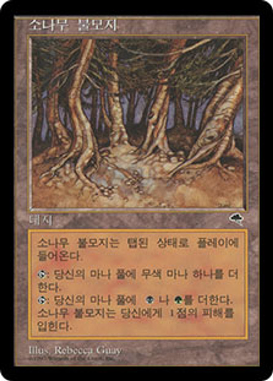 Pine Barrens MTG Magic Card Tempest