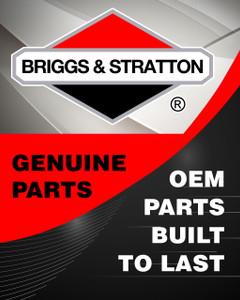2860643SM - NUT-HEX FLANGE 5/16-1 Briggs and Stratton Original Part - Image 1