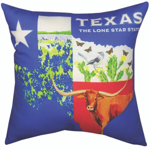 Texas College 18 x 18 Pillow