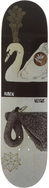 "Magenta 8.125"" Ruben Spelta Zoo Deck"