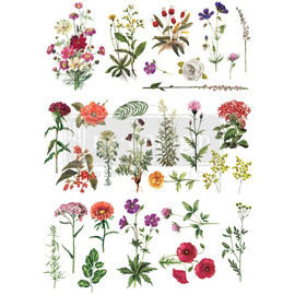 "Prima Re-Design Decor Transfer Floral Collection 22""X32"""
