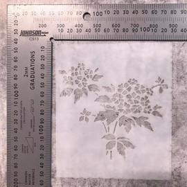 Imagine If Stencil - Hydrangea plant