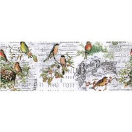 Idea-ology Collage paper Aviary