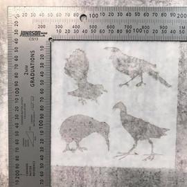 Imagine If Stencil - Nature New Zealand Birds