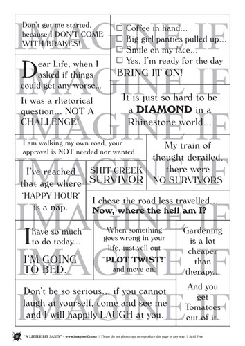One A4 sheet of sayings or quotes that are a little bit sassy, a little smart, and maybe just what you need. We have used Acid free paper, this is printed on plain matt white card, but can be inked, or sprayed to match your projects. It is very good for tearing, and with clear boxes, trimming is made easy. Printed here in New Zealand. can be used for scrap booking, card making, art journaling or off the page projects.
