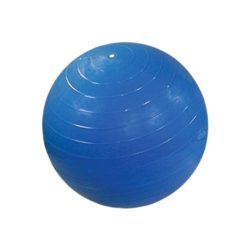 cando ball chair accessory replace ball childsize