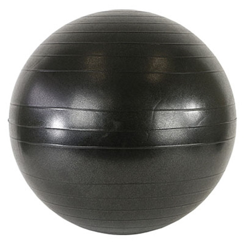 cando ball chair accessory replace ball adultsize