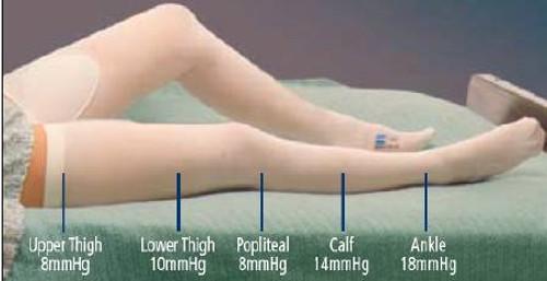 Anti-embolism Stockings T.E.D. Thigh High