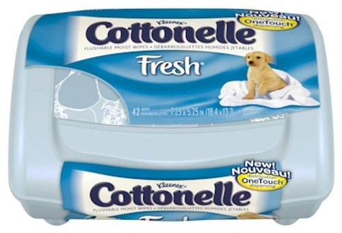 Kimberly Clark Cottonelle Personal Wipe