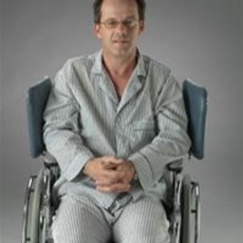 Posey Wheelchair Wingbacks
