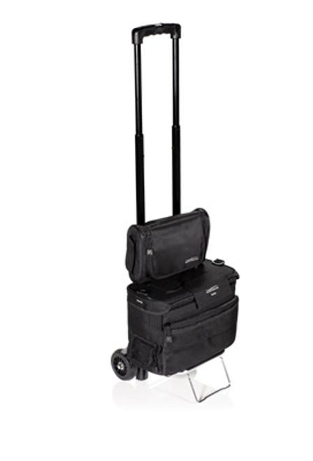 evergo mobile cart