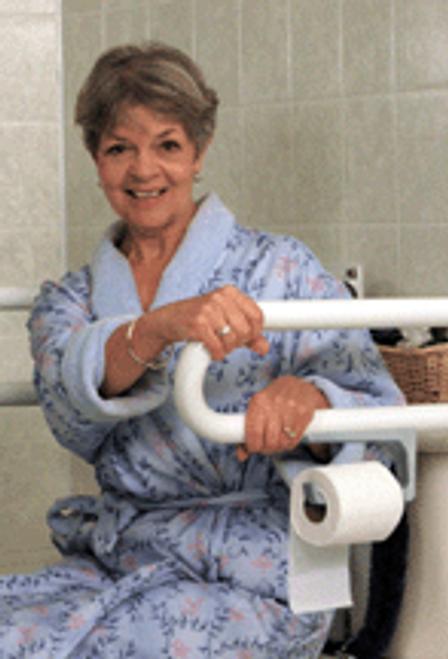 P. T. Rail Toilet Roll Holder