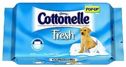 Personal Wipe Cottonelle