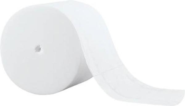 Toilet Tissue Scott