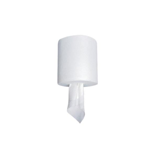 Saalfeld Redistribution Spring Grove Paper Towel 4